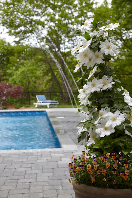 Dream Home Container Plantings - Armonk, NY eclectic-landscape