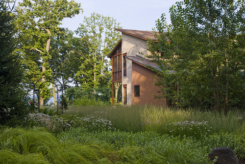 Drifts of naturalistic plantings contemporary landscape