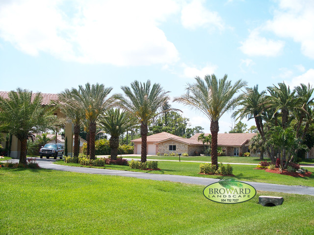 Driveway landscaping tropical landscape miami by for Landscaping rocks broward county