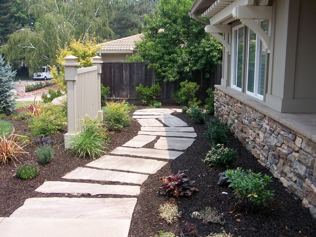 Drought tolerant and low maintenance landscape for Low maintenance drought tolerant plants