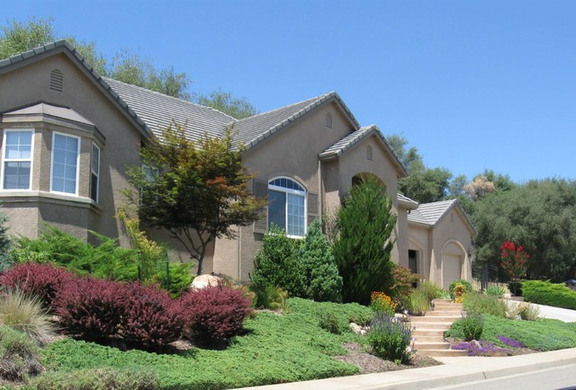 Drought tolerant cold hardy and low maintenance front yard for Low maintenance drought resistant landscaping