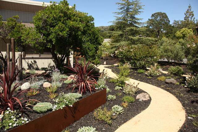 Drought Tolerant Contemporary Front Yard In Wine Country