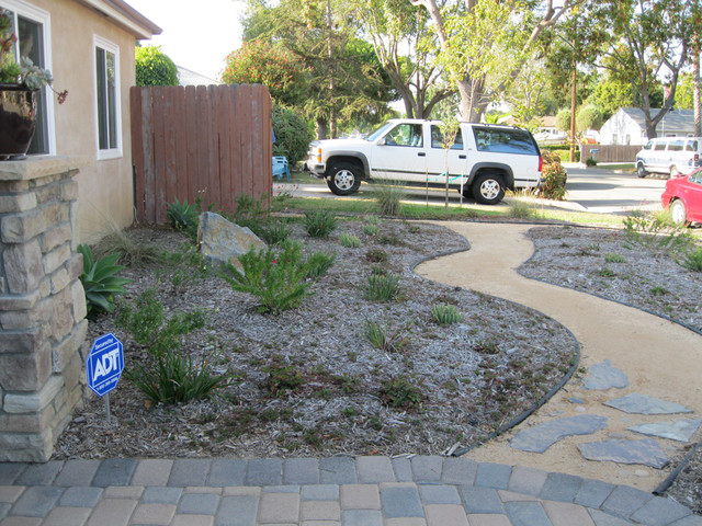 Drought Tolerant Costa Mesa Front Yard Contemporary Landscape