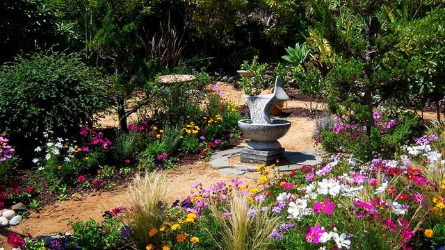 Drought tolerant flower garden Mediterranean Garden Orange