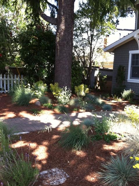 Drought tolerant garden Contemporary Landscape San