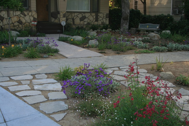 Drought tolerant gardens Traditional Landscape Los Angeles