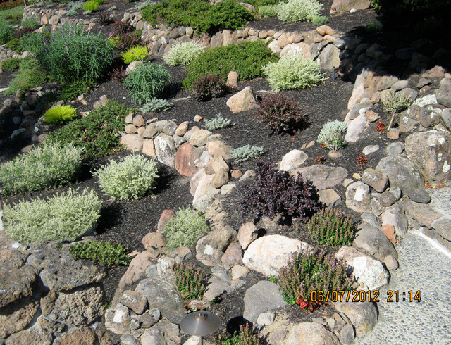 Drought Tolerant Landscape Transitional Landscape