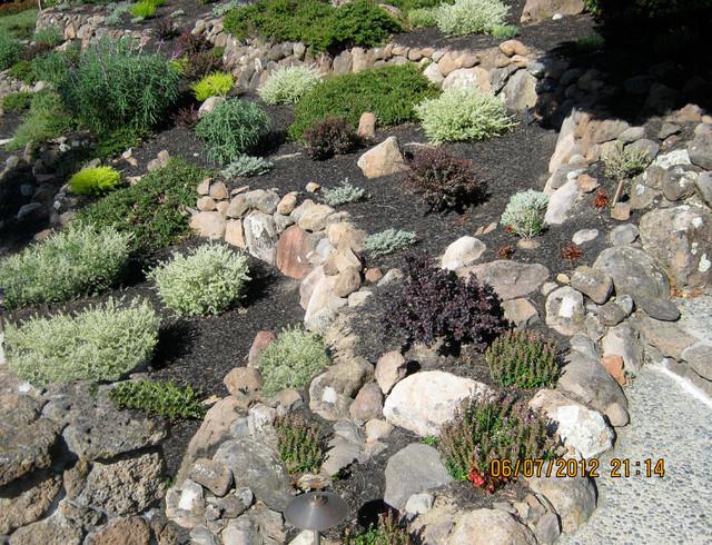 Drought tolerant landscape transitional landscape for Drought resistant landscape
