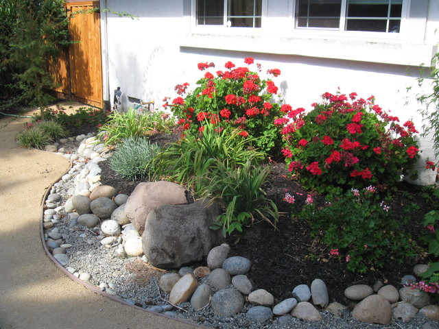 Drought tolerant traditional landscape san francisco for Small no maintenance garden
