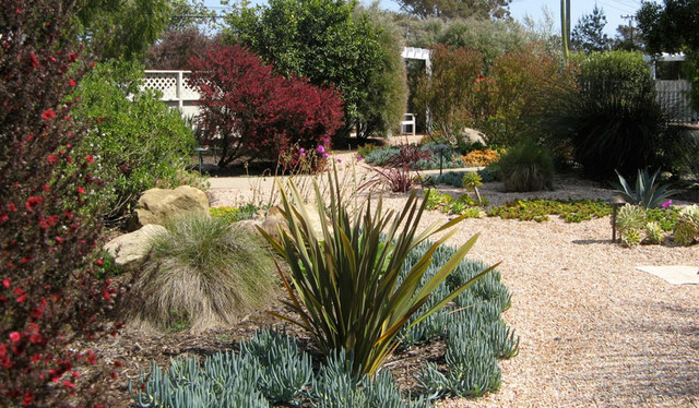 Drought Tolerant Garden Design 5 drought tolerant landscaping ideas for a modern low water garden freshomecom Drought Tolerant Mediterranean Beach Style Landscape