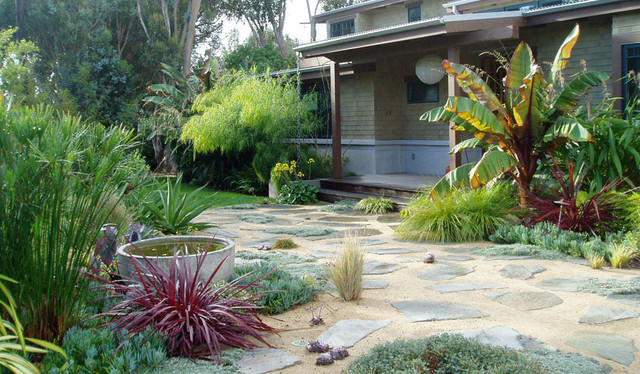 Drought tolerant mediterranean beach style landscape for Garden design los angeles