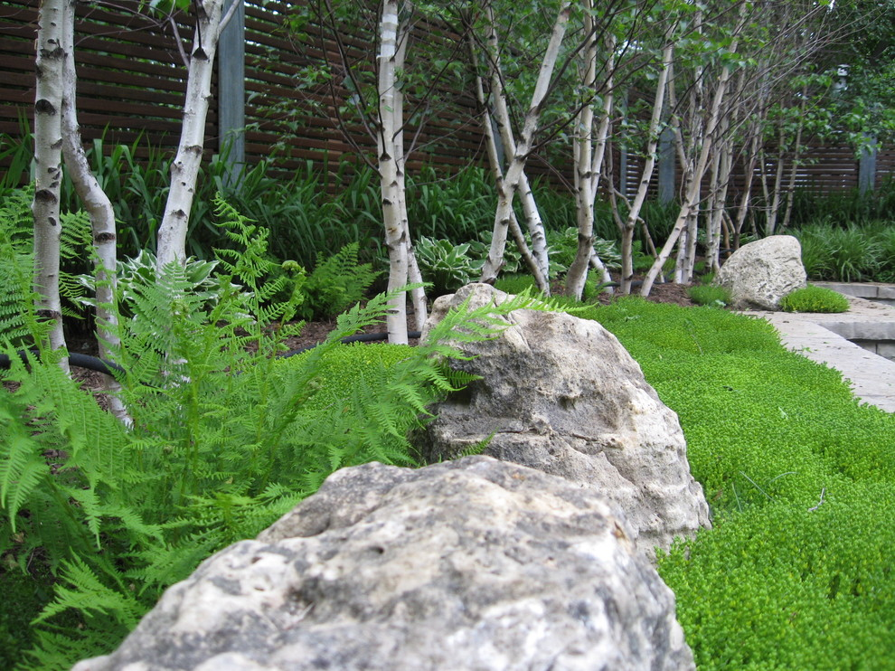Inspiration for an asian rock landscaping in Toronto.