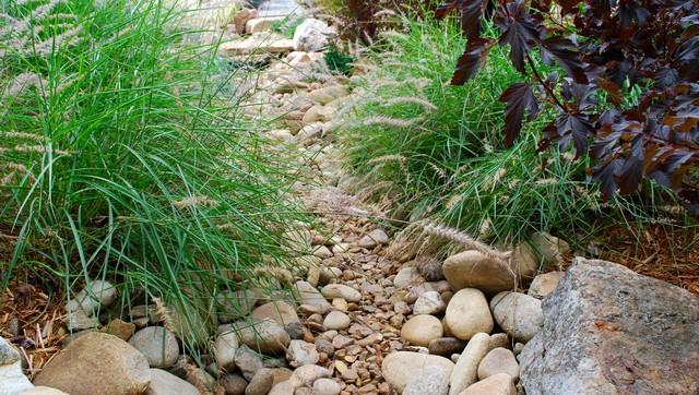 Dry creek bed close-up eclectic-landscape