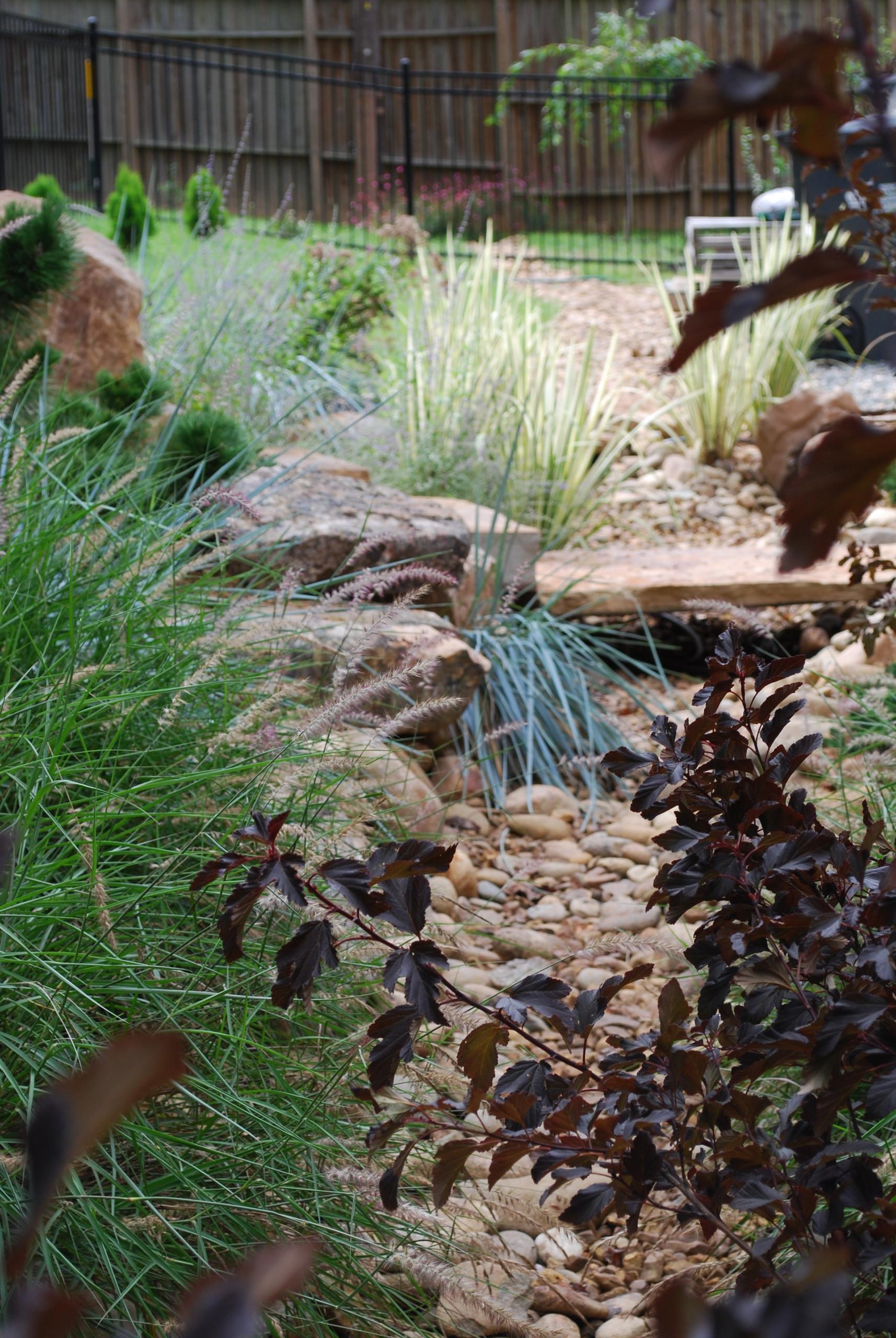Dry creek bed.