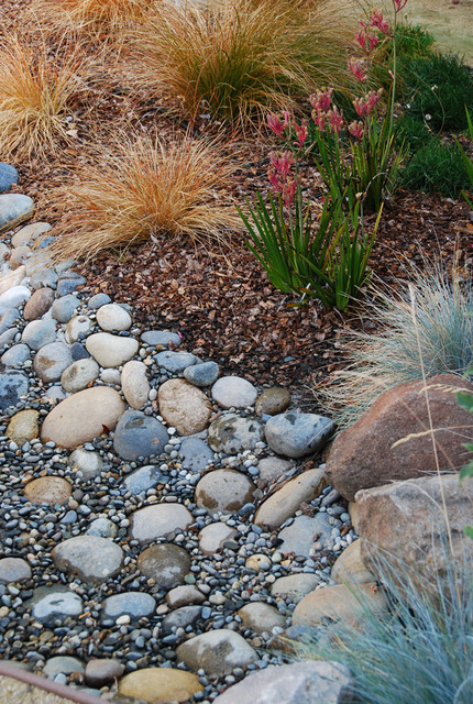 Dry creek detail asian landscape san francisco by for Verdance landscape design