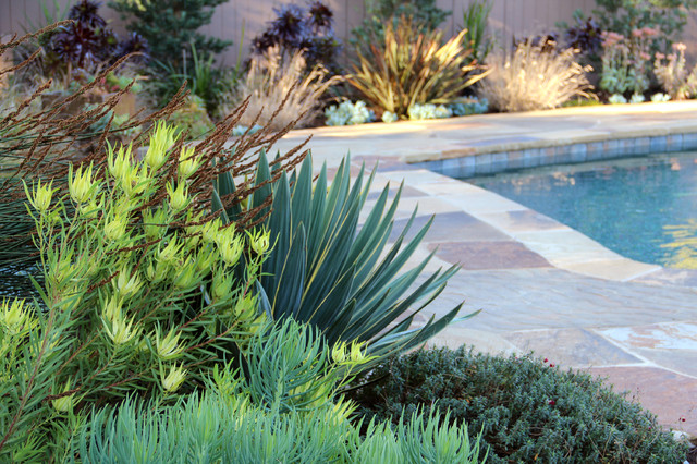Dry garden palos verdes contemporary landscape for Landscaping rocks in los angeles