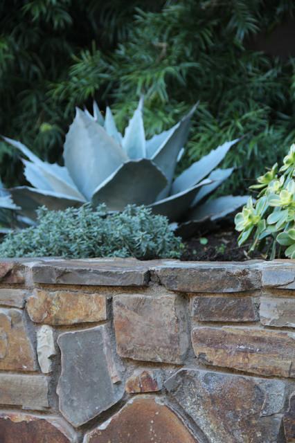 Dry Garden Palos Verdes Contemporary Landscape los