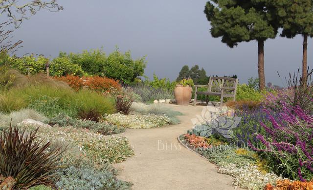 Dry Garden Palos Verdes CA Contemporary Landscape