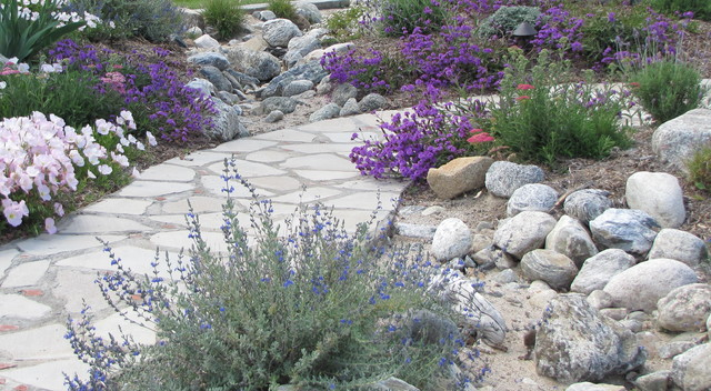 Dry stream bed directs drainage during rainy season for Dry garden designs