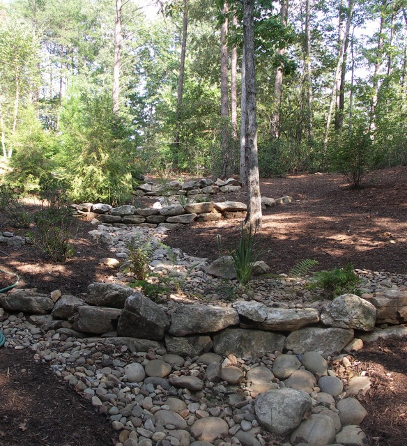 Dry Streams Rain Gardens and Bog Gardens Eclectic Landscape