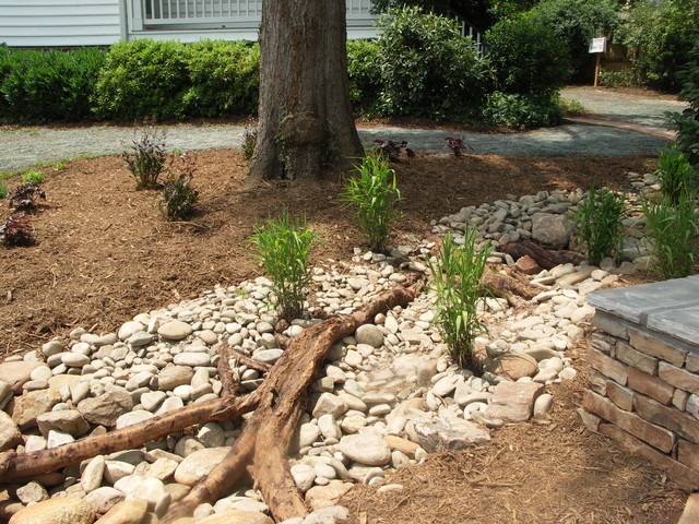 Dry Streams Rain Gardens And Bog Gardens Eclectic
