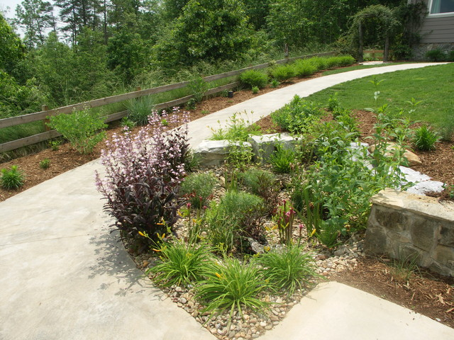 Dry Streams, Rain Gardens and Bog Gardens traditional-landscape