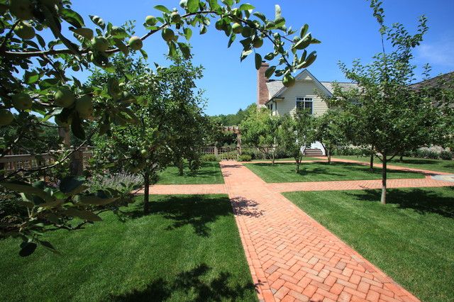 Dwarf Fruit Orchard With Brick Pathways