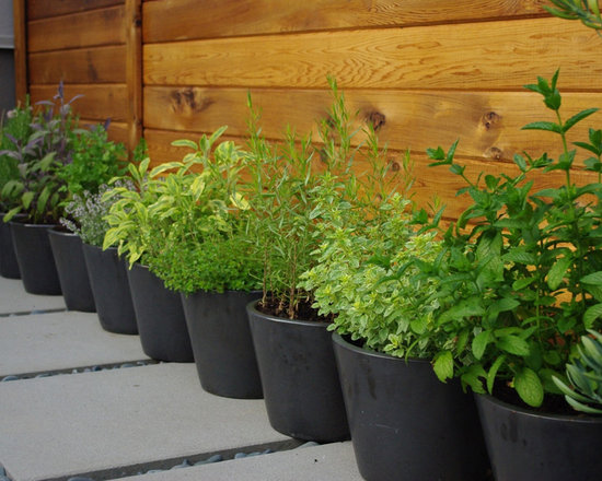 Herb Garden Container Design, Pictures, Remodel, Decor and Ideas