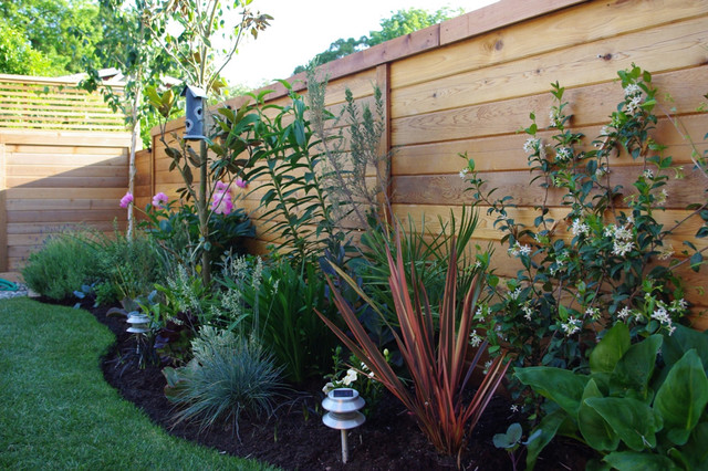 Aloe test garden for Garden design ideas houzz