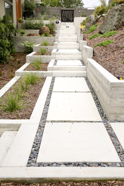 This is an example of a large contemporary full sun hillside landscaping in San Francisco.
