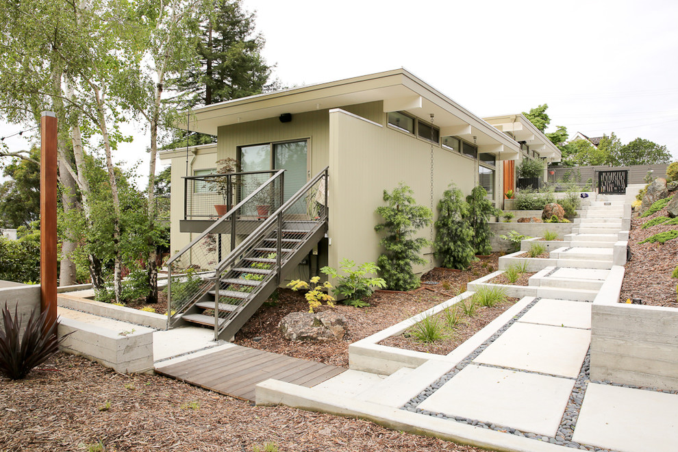 Inspiration for a large contemporary full sun hillside landscaping in San Francisco.