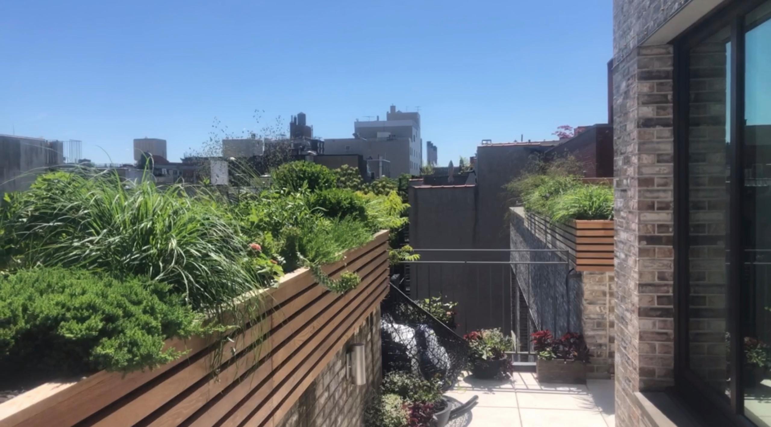 East Village Terrace