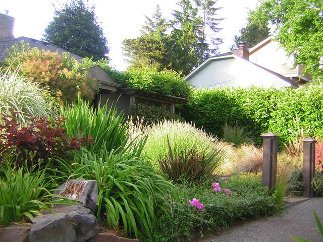 easy care sun garden rustic landscape