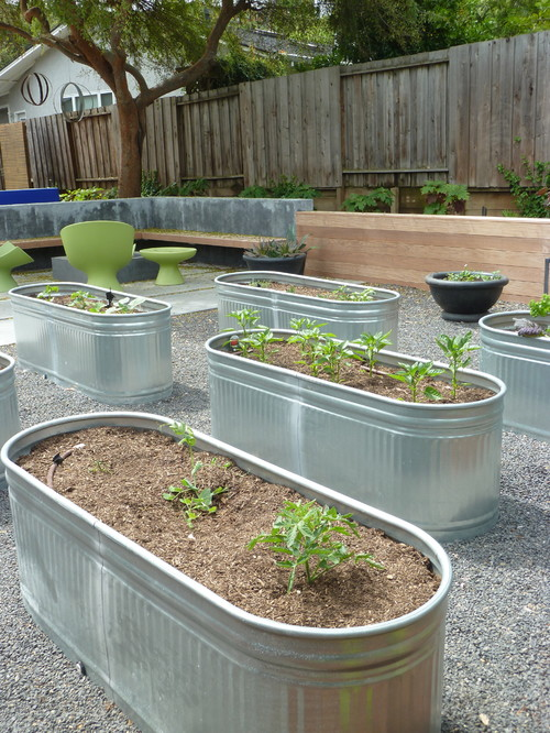 Trough raised garden beds