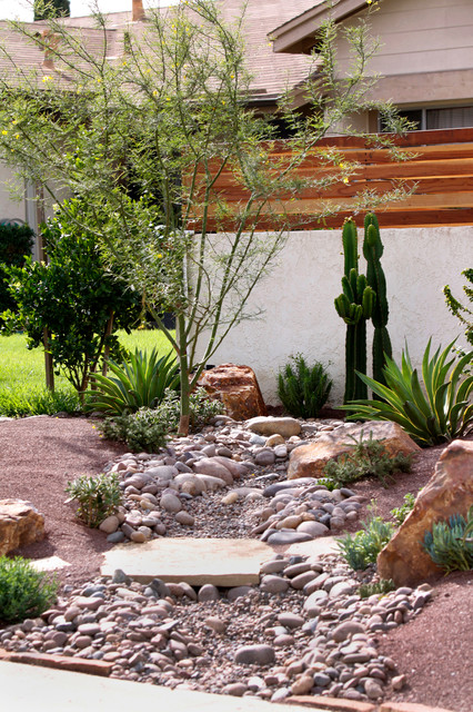 Eclectic landscape for Garden design with succulents