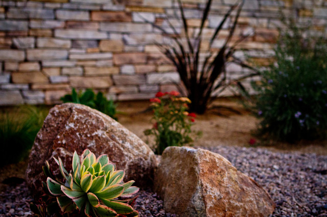 Eco Minded Solutions contemporary-landscape