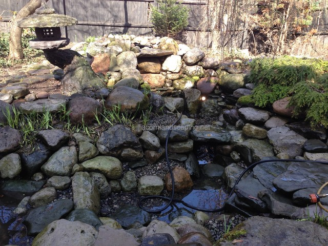 Ecosystem pond maintenance spring pond or water garden for Garden pond cleaning