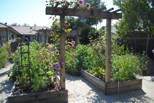 Edible california native garden rustic landscape for Garden archway designs