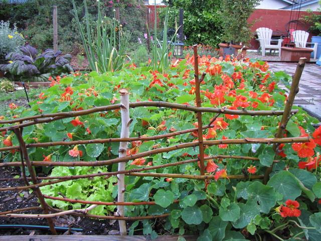 Edible landscape design landscape orange county by for Edible garden ideas designs