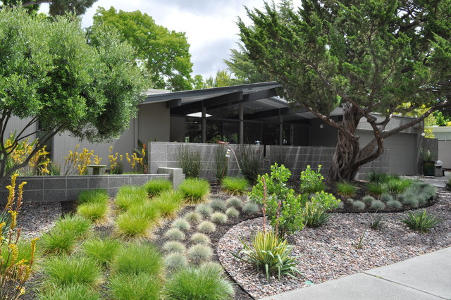 Eichler front yard landscape san francisco by huettl for Front yard and backyard landscaping ideas