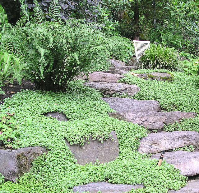 Landscape Design In A Day: Elegant Northwest Natural Hillside Garden