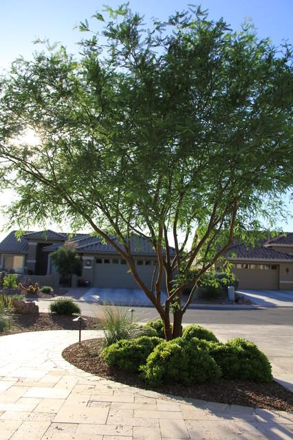 Emerald Tucson mediterranean-landscape