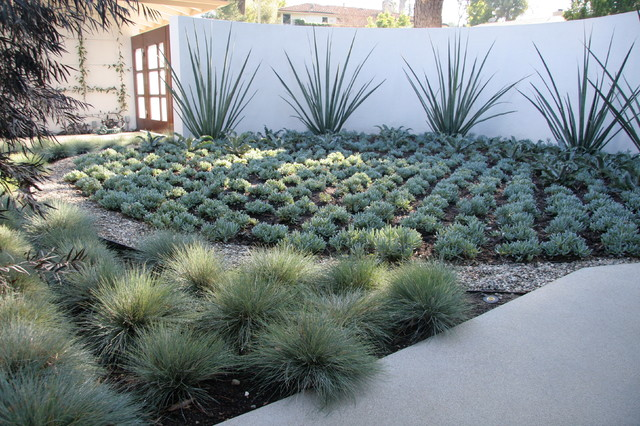 Encino hills contemporary contemporary landscape los for Houzz landscape architects