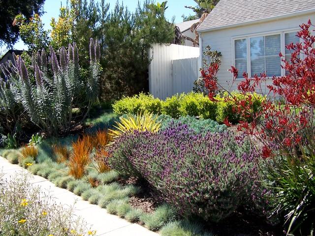 english garden california style トラディショナル 庭