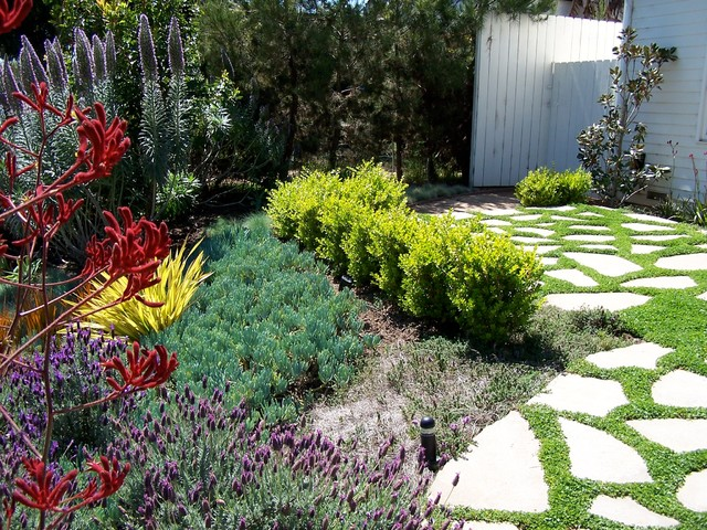 Inspiration For A Mid Sized Traditional Full Sun Front Yard Concrete Paver Landscaping In Los