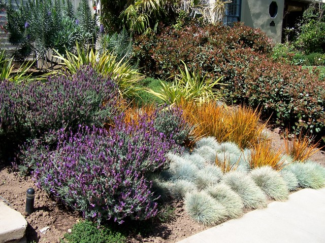 English Garden California Style Farmhouse Landscape Los