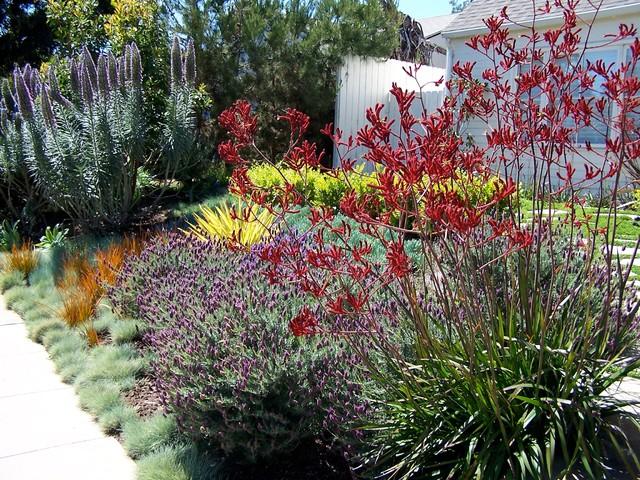 English Garden California Style Traditional Landscape Los