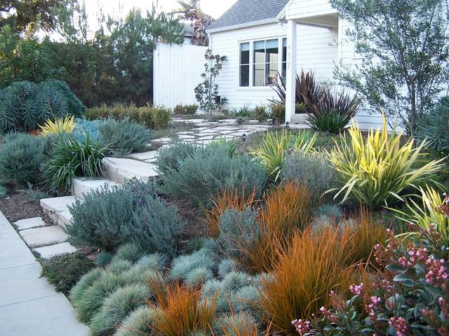 English Garden California Style Front yard