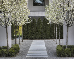 Entry Courtyard contemporary-landscape