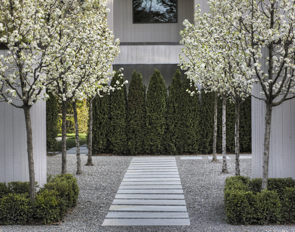 Entry Courtyard Contemporary Landscape San Francisco By